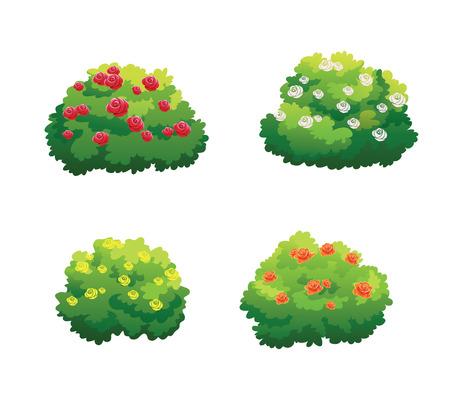 Illustration de brousse pour décorer magnifiquement le jardin. Banque d'images - 95600503