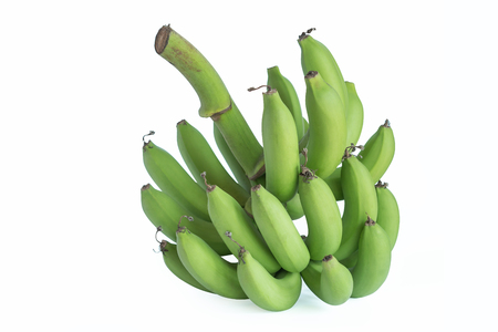 Not ready to eat bananas because they have to wait for the first.