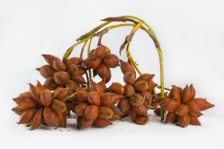 Salak is a type of palatable fruit and sweet and sour taste.