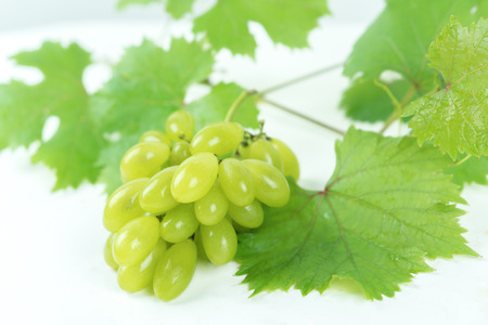 Green grapes on a white background look very nice and beautiful.