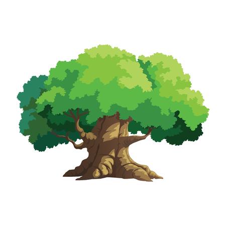 vector illustration for tree on white background Ilustrace