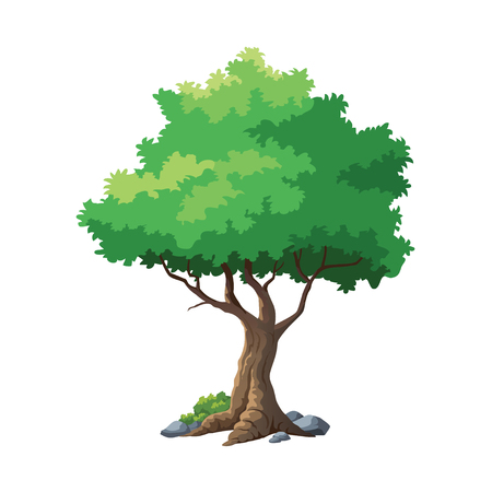 vector illustration for tree on white background  イラスト・ベクター素材
