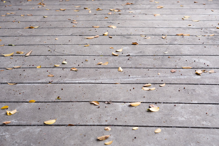 The leaves on the cement floor look natural.