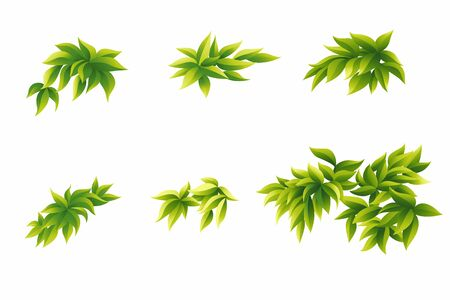 Little shrub for garden and jungle isolated on white background. Vector Illustratie