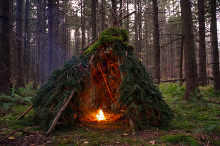 Primitive Wikiup Bushcraft shelter with Campfire burning in the Wilderness