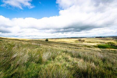 Haworth moor. Yorkshire.
