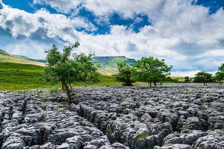 Ingleborough mountain with limestone pavement. Yorkshire Dales National Park
