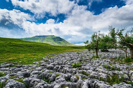 Ingleborough mountain and limestone pavement. Yorkshire Dales National Park