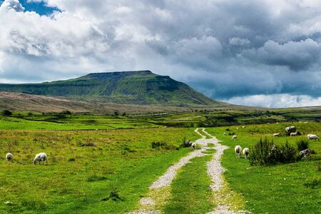 Ingleborough mountain. Yorkshire Dales National Park 免版税图像