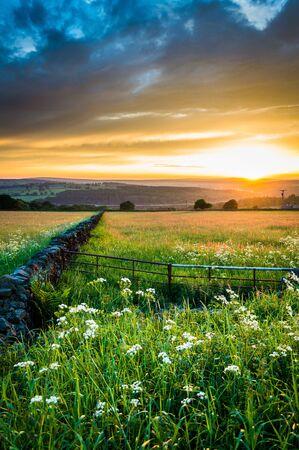Puesta de sol sobre prados de verano. Yorkshire