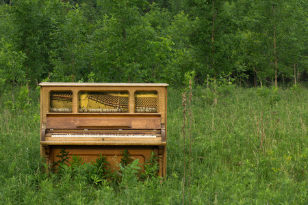 upright piano: Abandoned Piano - in a meadow with copy space to the right.