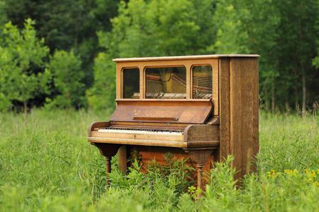그린 필드  초원  초원에 버려진 된 오래 똑바로 나무 피아노. 스톡 콘텐츠