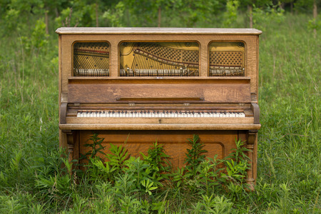 Old upright piano left in a field.