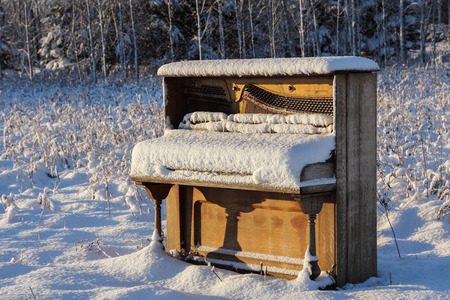 upright piano: Upright piano that has been abandoned in a snowy winter field   meadow