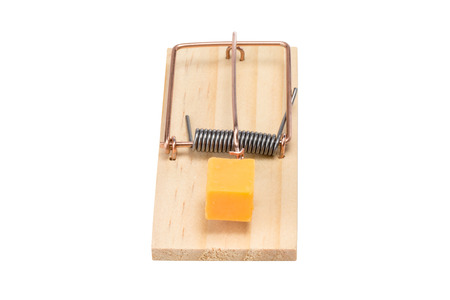 Mouse trap baited with a large piece of cheddar cheese.  Top front view.  Studio close-up isolated on a white background.  Concepts could include risk, reward, danger, temptation, or others.