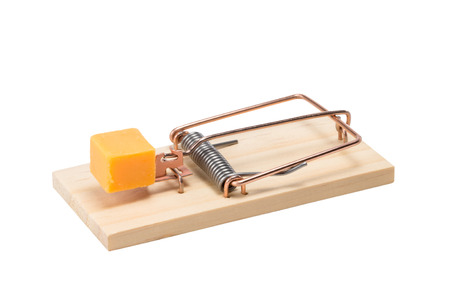 baited: Mouse trap baited with a large piece of cheddar cheese.  Oblique view.  Studio close-up isolated on a white background.  Concepts could include risk, reward, danger, temptation, or others.