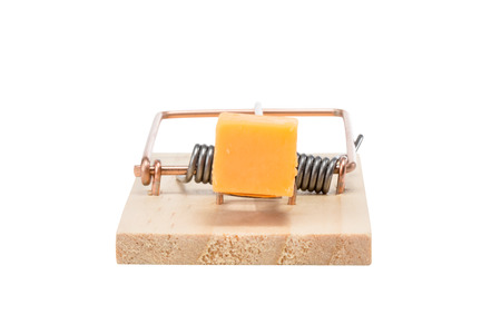 baited: Mouse eye view of mouse trap baited with a large piece of cheddar cheese.  End view.  Studio close-up isolated on a white background.  Concepts could include risk, reward, danger, temptation, or others.