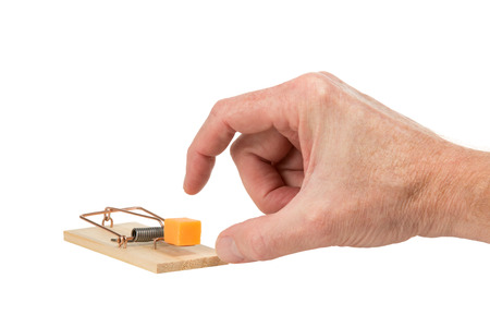 pluck: Male hand ready to pluck a large piece of cheddar cheese that is placed as bait in a mouse trap.  The classic spring mousetrap is copper and wood.  Isolated on a white background.