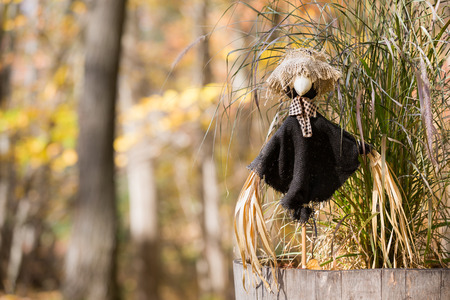 sagebrush: Decorative scarecrow in front of a green sagebrush plant.  Muted fall colors and out of focus background.  Copy space in left frame if needed. Stock Photo