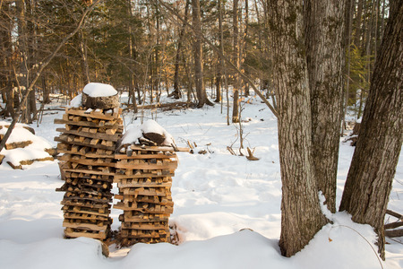 include: Stacks of snow covered firewood seen in the forest.  Concepts could include nature, energy, winter, rural living, and others. Stock Photo