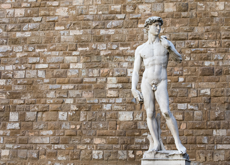 nude male body: David statue by Michelangelo on the Piazza della Signoria in Florence, Italy.  Distracting background items were removed from the wall to provide a cleaner image.