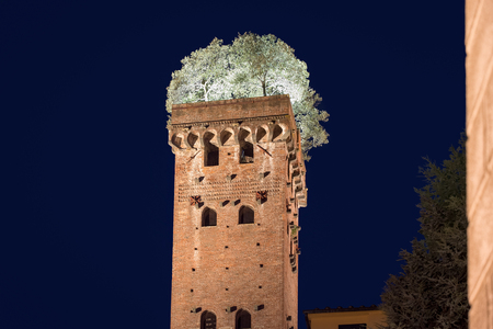 quirky: Medieval Guinigi Tower in Lucca, Tuscany, Italy which has seven oak trees growing from the top.  Photographed at night with illuminated trees for a dramatic look.  A unique and quirky historical site in Europe.