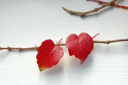 shaped: Naturally heart-shaped
