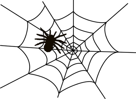 spider web: SPIDER IN WEB Illustration