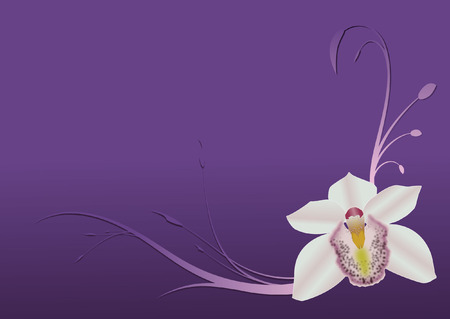 orchid design Vector