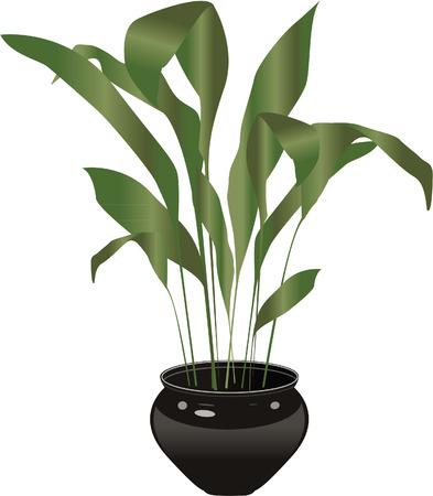 potting soil: pot plant Illustration