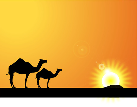 silhouette camels