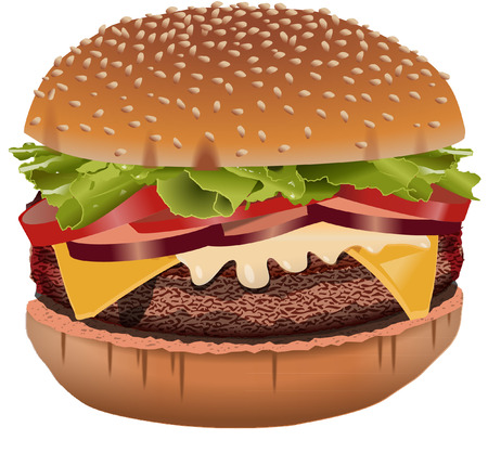 BURGER illustration on white Vector