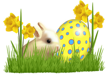 Easter rabbit with daffodils and easter egg Vector