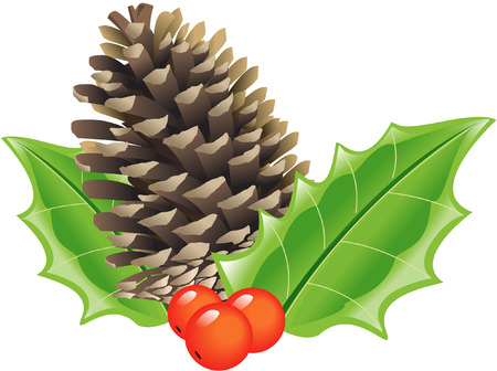 christmas ivy:  CONE AND HOLLY