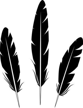 tatouage oiseau: PLUMES