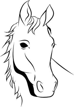 drawings image: HORSE