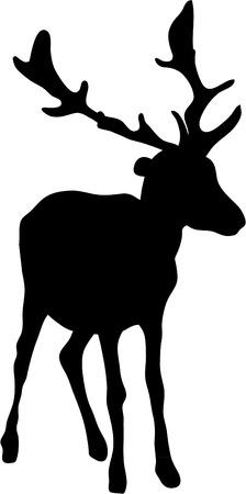 cervidae: black silhouette of a deer on white Illustration