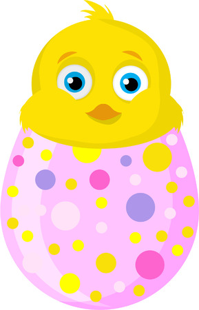 CHICK AND EGG Vector