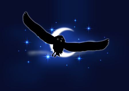 free fall: OWL