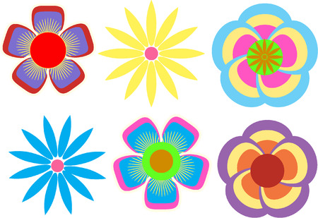 margerite: FLOWERS