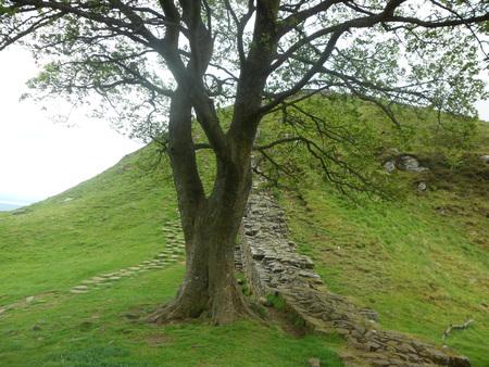 Hadrian's Wall, UK