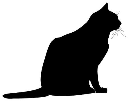 silhoette: cat silhouette