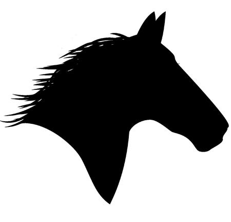 paard silhouet