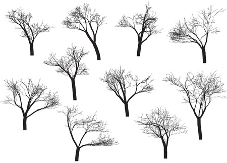 plats: Trees collection Illustration