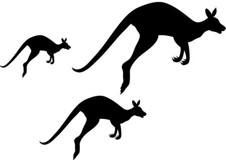 skippy: kangaroo