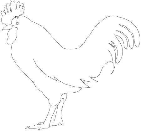 cockscomb: Chicken silhouette