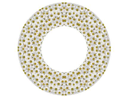 Kaleidoscopic Daisy