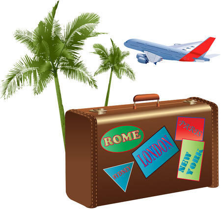 suitcase packing: Suitcase plane palm tree