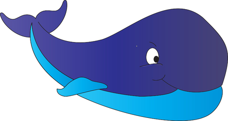 baleen whale: Whale Illustration