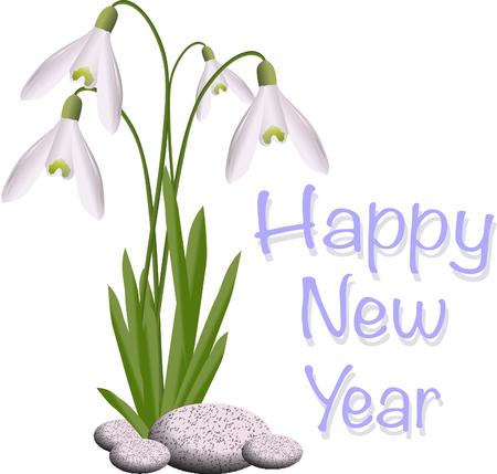 Snowdrops happy new year Illustration